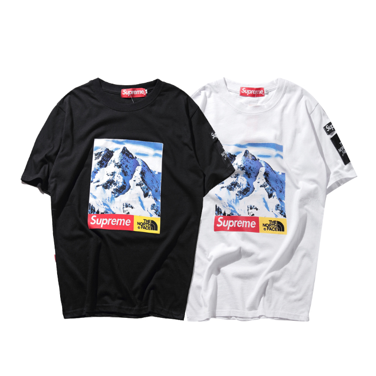 17FW Supreme X The North Face Mountain Tee 2 Color